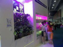 植物补光2.png